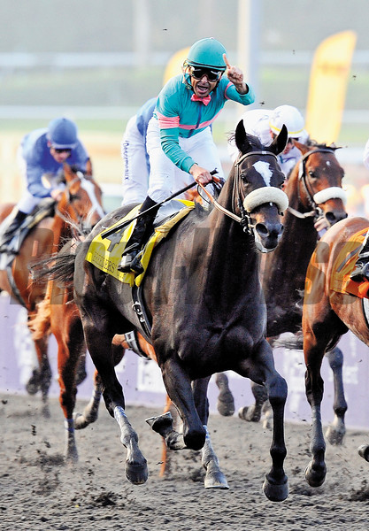 Zenyatta, Mike Smith up, wins The Breeders Cup Classic at Santa Anita<br /> Photo by: Rick Samuels
