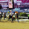 Blame strikes the front at the eigth pole as zenyatta and jockey mike smith begin to roll from the outside
