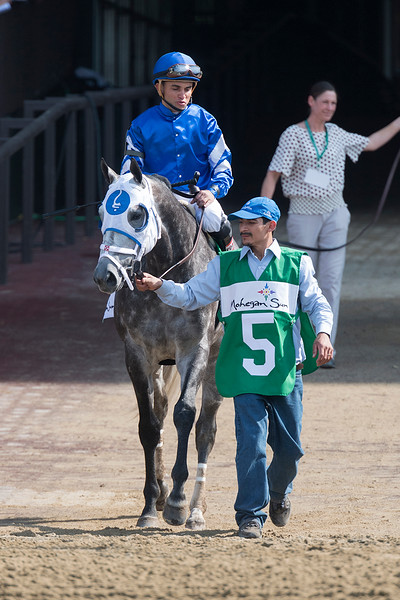 Frosted Metropolitan Handicap post
