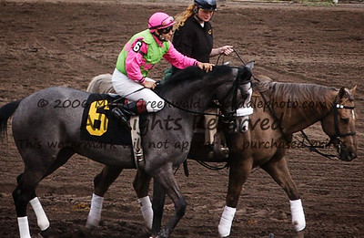 Proud of Rosie goes to post, with Jeremy Rose; she will win.  Gulfstream 5th, 2/2/02.