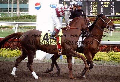 Edgar Prado on Funny Cide, winner of the 2003 Derby.  Funny Cide would finish second, beginning what many hoped would be a comeback.