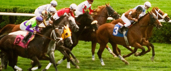 3 is Raphaelite, with Jose Espinoza (will show); 8 is America's Guy, Fernando Jara; 2 is Stormy Forest, E. Coa