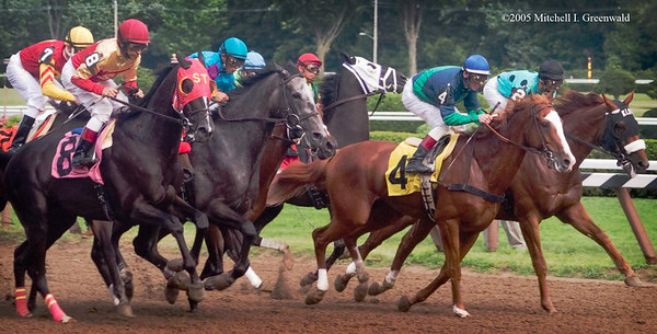 Heathrow, Richard Migliore up, and Ron Greschner, with John Velazquez,  pull briefly to the head of the pack 7th on August 5, 2005. Heathrow will finish third.  The 8 is Metallic Moon (Jose Santos up).