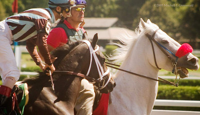 Grand Consequence, John Velazquez up