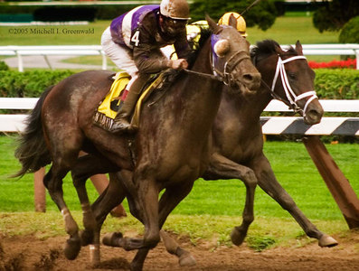Naughty New Yorker, J. Samyn up, pulls ahead; he will win.  The Albany, $150,000 for NY Breds.  8/24/05.