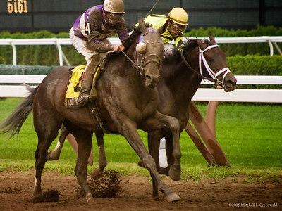 Naughty New Yorker, J. Samyn up, pulls ahead; he will win.  The Albany, $150,000 for NY Breds.  8/24/05.