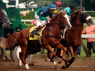 Heathrow, Richard Migliore up, breaks sharply in the 7th on August 5, 2005. He will finish third.  In the background (no. 2) is Ron Greschner, with John Velazquez.  Behind him is Wild Vicar (Eibar Coa up).