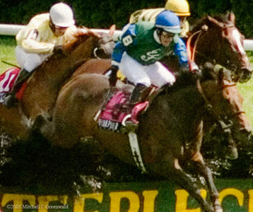 Hirapour, Matt McCarron up, takes the lead going over the last jump; will go on to win the New York Turf Writers Cup