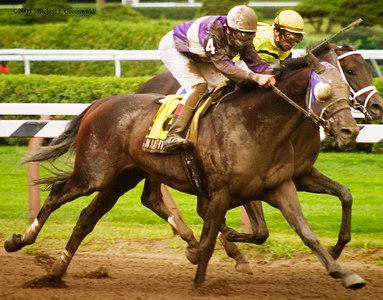 Naughty New Yorker, J.L. Samyn up, pulls ahead; he will win.  The Albany, $150,000 for NY Breds.  8/24/05.