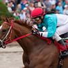 Dr Blarney African prince Stakes finish