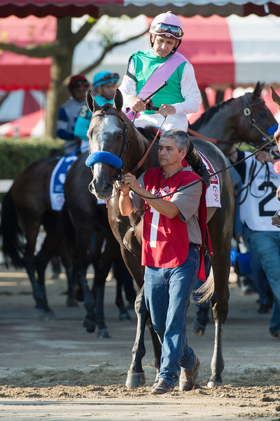 Arrogate Travers post