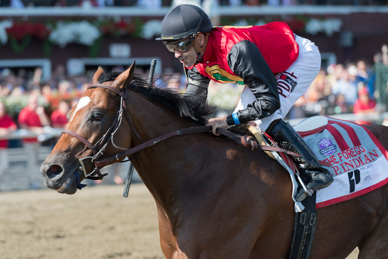 A.P. Indian Forego Stakes finish