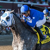 Frosted Whitney finish