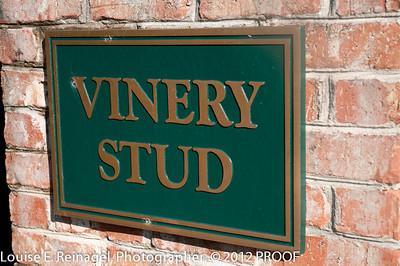 VineryStallionsFLProof-0096