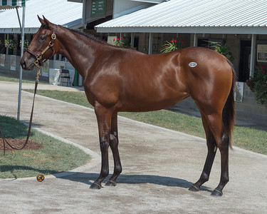 238keesept19_QualityRoad-AskTheQuestion18f_wpt_5425