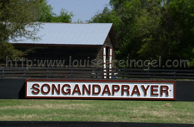 Songandaprayer at Marablue Farm 3/15/02                           Image  #3998