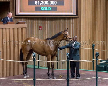 Keeneland April 2yo 2019 #130 $1.3M