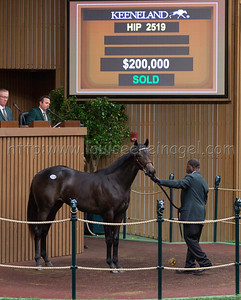 2519keesept19_LiamsMap-LoughNess18f