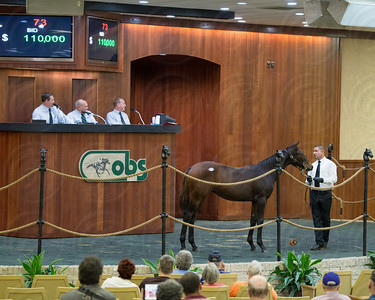 Hip 073 obsfall13_Kitten's Joy-Brickyard Gal 13f, Top Line Sales LLC, Agent III  , Machmer Hall$110,000 TOP WEANLING