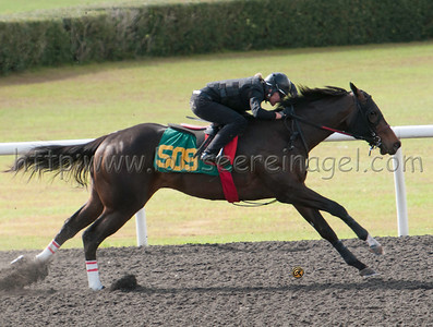 OBS March 2015 Breeze Friday