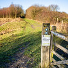 Thorpe Marsh Nature Reserve