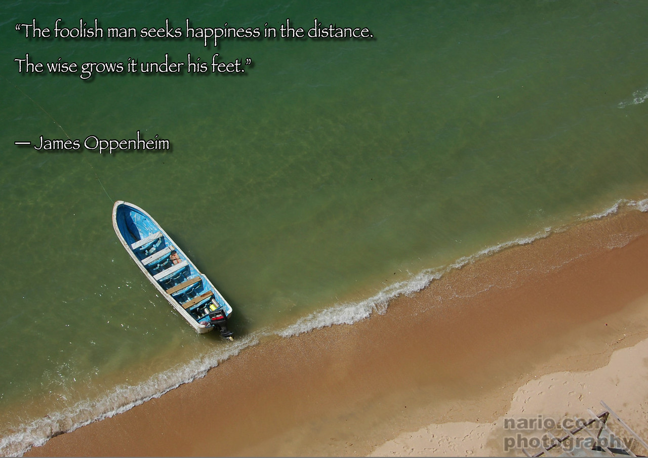 This is the simplest and hardest truth of all. your happiness lies under your nose, within the reach of your feet.