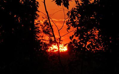 BIG sunset in Northville, Michigan.
