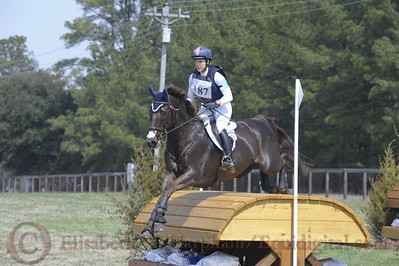 00028 - CIC*** - 187 - Allison Springer - Arthur - 10