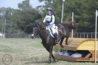 00030 - CIC*** - 187 - Allison Springer - Arthur - 12