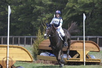 00024 - CIC*** - 187 - Allison Springer - Arthur - 06