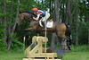 00010 - CCI2* - 3 - Dornin Anne North - Lion Display003