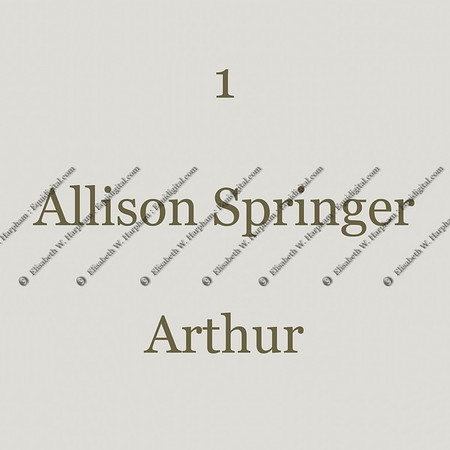 0001 - 1 - Allison Springer - Arthur - 001