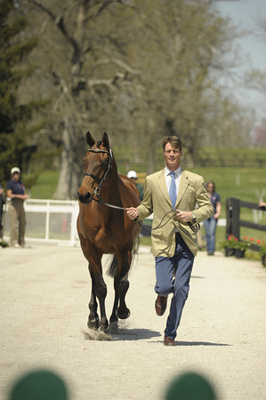 3 - William Fox-Pitt - Seacookie TSF - 004