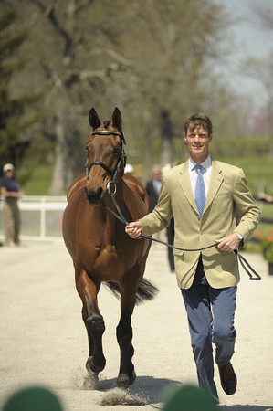 3 - William Fox-Pitt - Seacookie TSF - 008