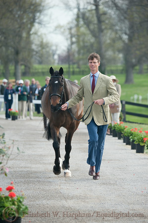 69 - William Fox-Pitt - Bay My Hero - 001