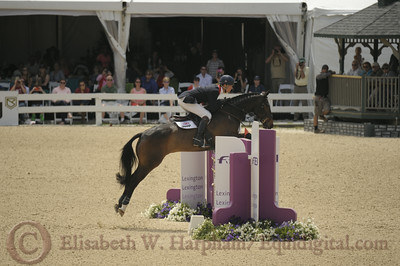 69 - William Fox-Pitt - Bay My Hero - 021