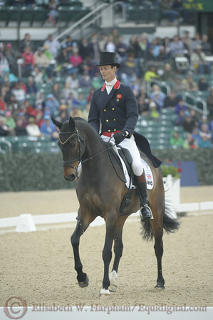 69 - William Fox-Pitt - Bay My Hero - 009