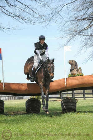 69 - William Fox-Pitt - Bay My Hero - 017