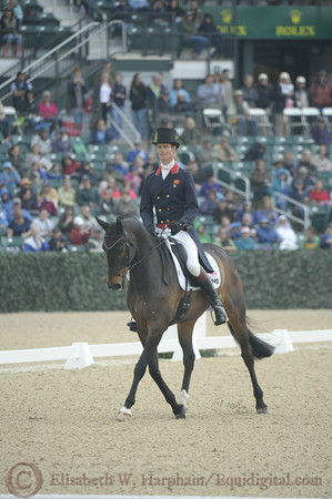 69 - William Fox-Pitt - Bay My Hero - 005