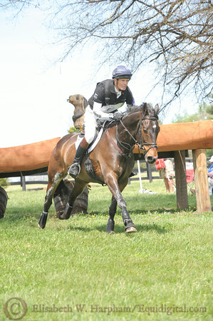 69 - William Fox-Pitt - Bay My Hero - 018