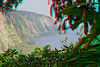 3D image of Waipio and the Hamakua coast.