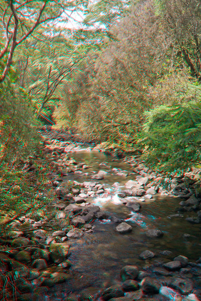 3D image of stream, Hilo, Hawaii