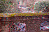 3D image of mossy bridge over stream.