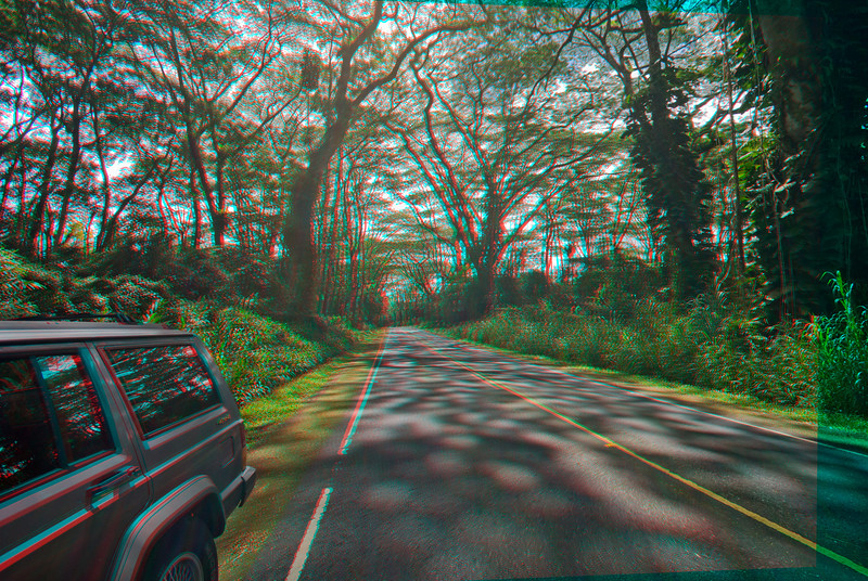 3D image of road in Puna, Hawaii