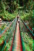 My lovely wife Lauray on suspension bridge on the way to Lavena Falls on Taveuni, Fiji
