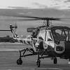 XT 787 Westland Wasp  (G-KAXT) from the westland wasp historic flight, Barton Ashes Hants