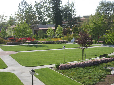 Garden view at St Joseph Center, Orange CA