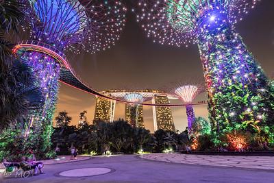 Singapore garden's