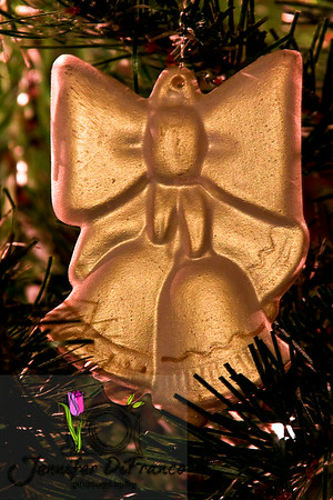 December 6, 2008<br /> <br /> 22 years ago today Ian and I was handed a very small box at our wedding reception by my Aunt Lucy.  Inside was this ornament.  It was our first wedding gift and every year is one of the first ornaments placed on our tree.<br /> <br /> Happy Anniversary Ian - I love you more now than I did 22 years ago.  You mean everything to me.