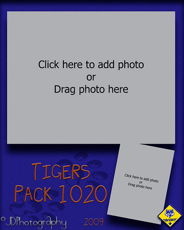 February 27, 2009  Tomorrow I have a session with the local cub scouts.  Last year they asked me to photography their blue and gold banquet (individual, group and family portraits) - they asked me back again this year.  I spent some time this week designing this memory mate template for the different packs.  Each have thier own color.  Tigers are orange, Bears - yellow, Wolves- red, and Weeblos- green.  The group photo will go on top and an individual head and shoulders shot on the bottom.